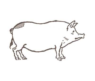 Boolarson-schede-Tagliata